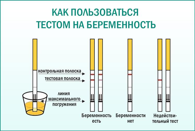 Тест полоски для определения беременности