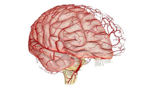 отклонения в состоянии сосудов головного мозга