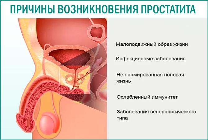 Духовная причина простатит лечение аденомы простатита пчелиным подмором