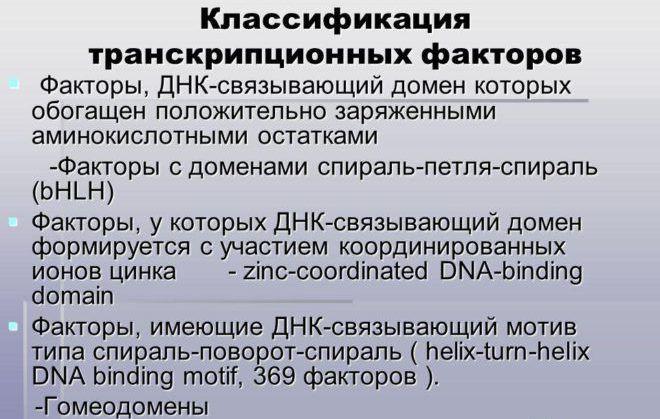 ДНК-связывающий домен