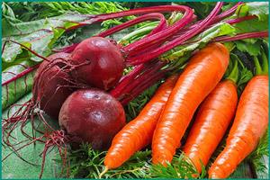 Свекла с морковью