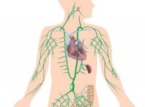 Увеличение лимфоузлов под мышками при мастопатии