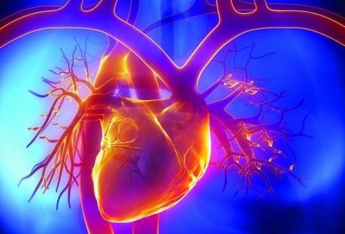 пэт в кардиологии