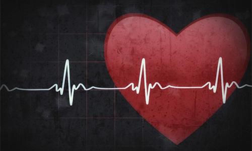 сердце проводит импульсы