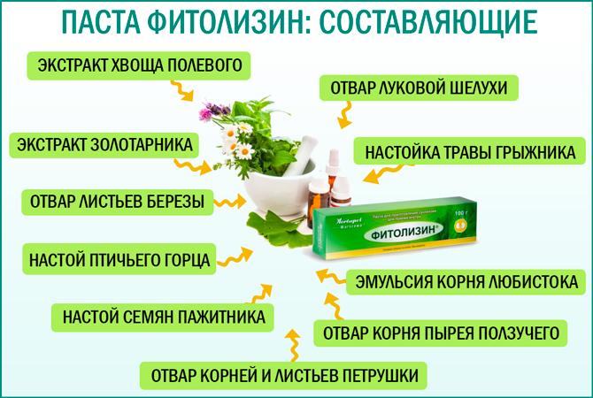 Состав пасты Фитолизин