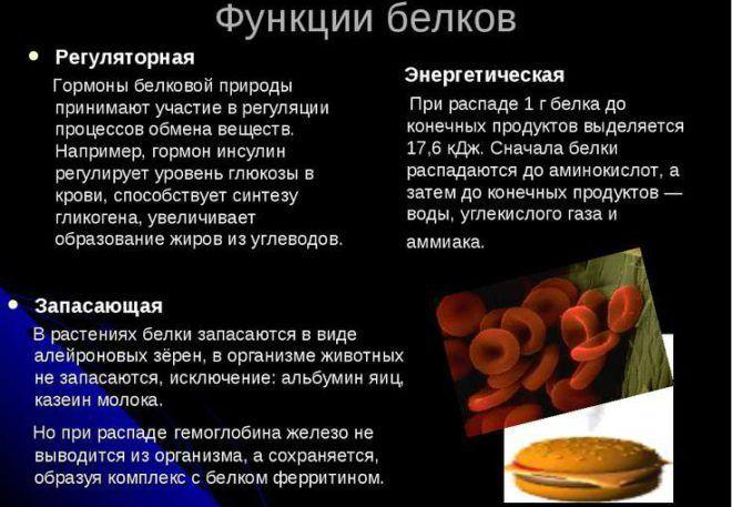 Гормоны белковой природы