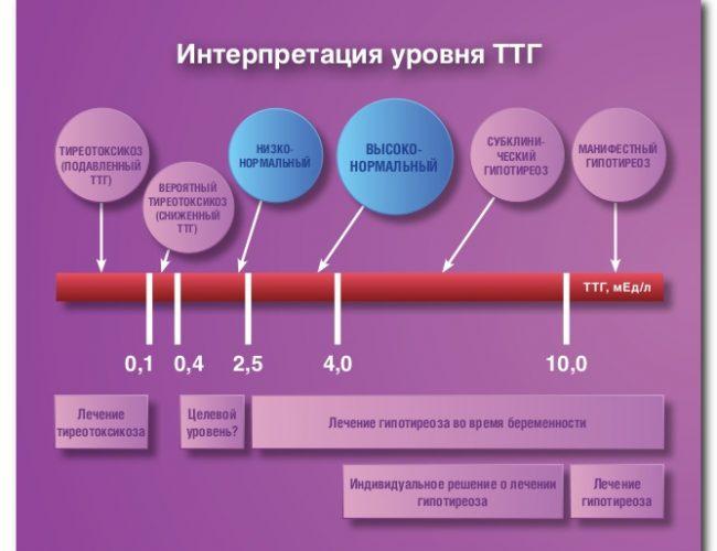 Тест на уровень гормонов ЩЖ и ТТГ