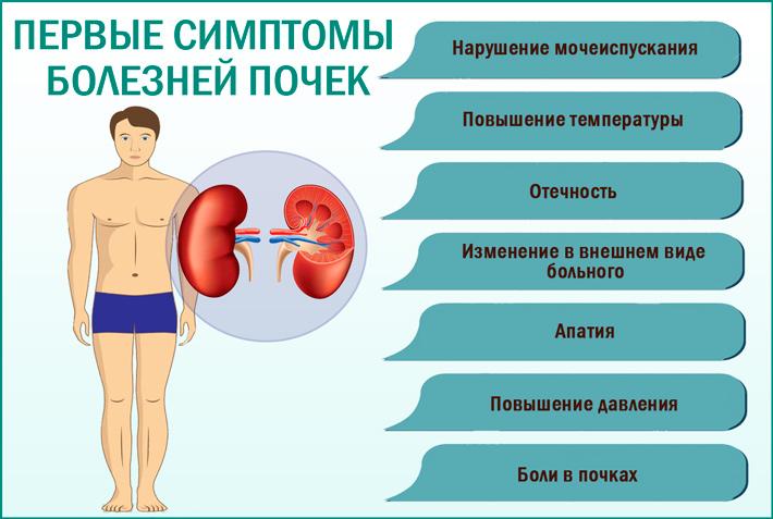 Болезнь почек: симптомы