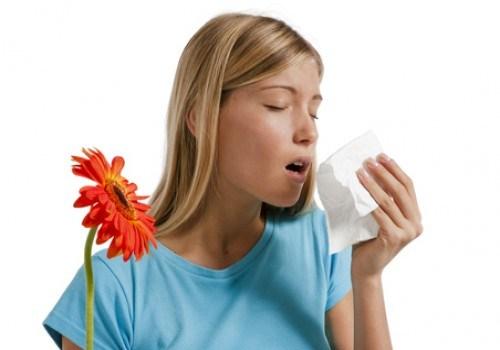 носовое кровотечение при аллергии