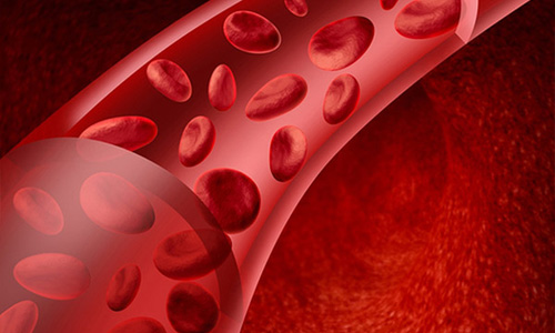 Онкотическое давление крови
