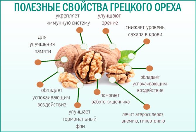 Грецкий орех: полезные свойства