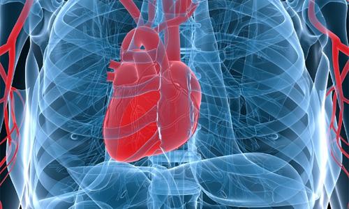 застой крови в сердце