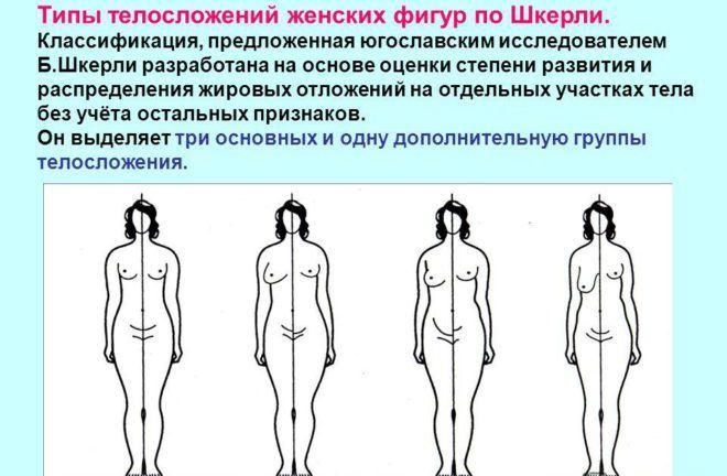 Формирование женской фигуры