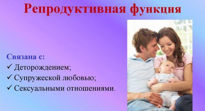 Репродуктивная функция