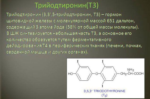 Т3 гормон