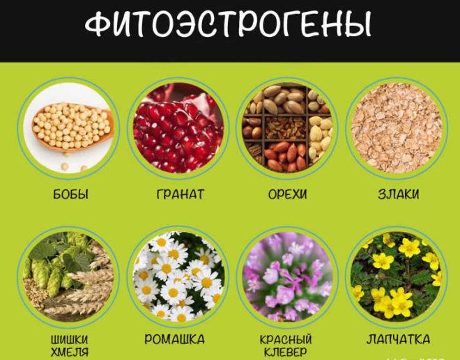 Фрукты с повышенным содержанием фитоэстрогенов