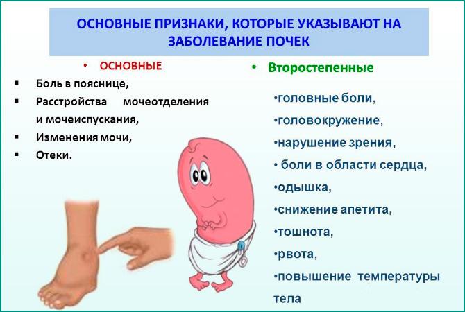 Признаки заболеваний почек