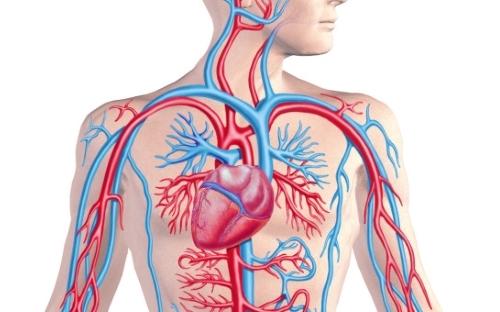 виды аортального стеноза