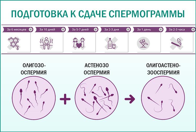 Диагностика спермограммы