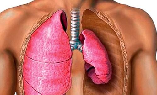 регургитация клапана легочной артерии