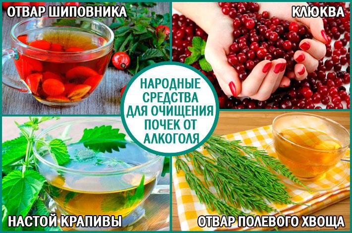 Очищение почек от алкоголя: народные средства лечения