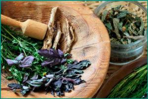 Самые сильные и эффективные травы при раке