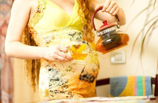Монастырский чай при беременности